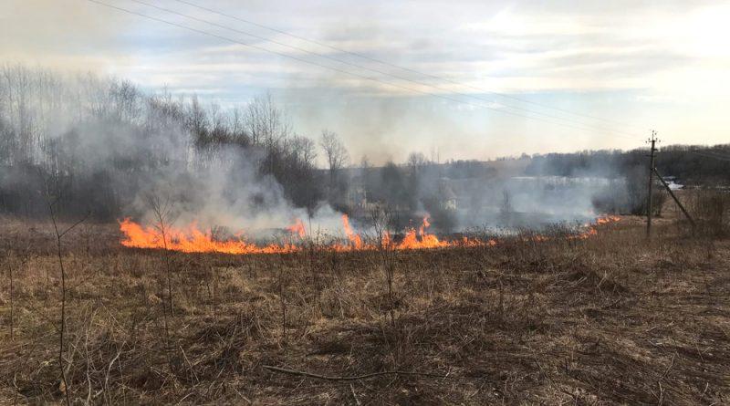 Сжигать траву опасно